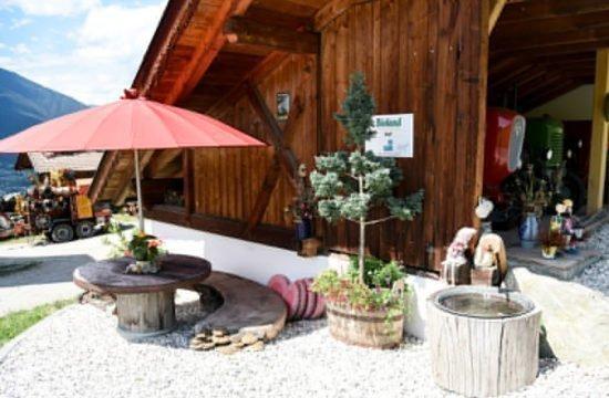 loechlerhof-bressanone-dintorni (15)